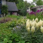 Tuin voor plantenliefhebbers