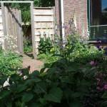 Verrassende tuin in nieuwbouwwijk